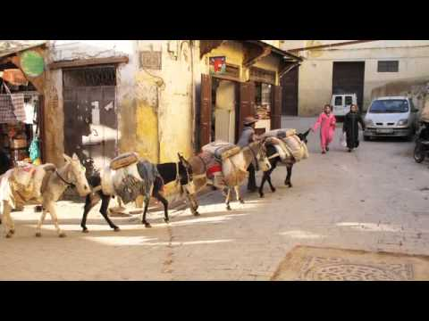 Abercrombie & Kent: Fez, the Heart of Morocco