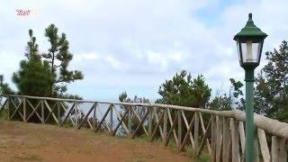 Natureza da Madeira [HD - MH]