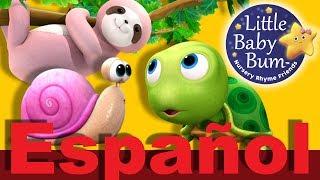 Cosas que van despacio | Canciones infantiles | LittleBabyBum