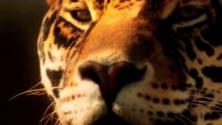 Blue Foundation – Eyes on Fire Zed's Dead Dubstep Remix клип Nikki Stanley 360