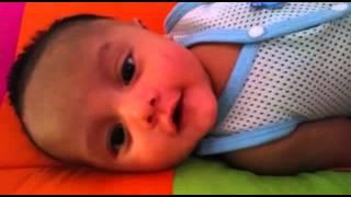 Tarique ziyyad baby cute ajak sembang