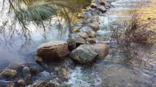 Winter water music of Sabino Creek