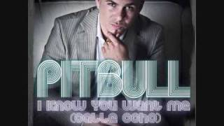Pitbull - I know you want Me Speed Tuneup