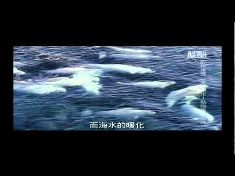 全球暖化公益短片-上 - YouTube