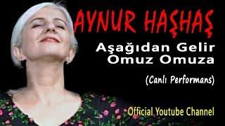 Aynur Haşhaş - Aşağıdan Gelir