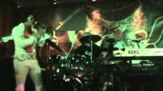 SHELVIS FEAT. BONDS + MR. PIGGY (SCHILDKRÖTE) - TUTTI FRUTTI