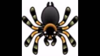 The Tarantula Song