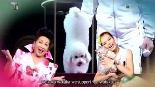 寵愛Wakaka 主題曲