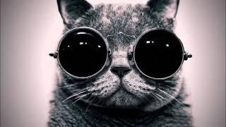 [Glitch Hop] Dominic Glover, Gary Crockett, Jay Glover - Golden Swagger (MKon Remix)