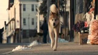 Hachiko: A Dog's Story . Goodbye Hachi ...