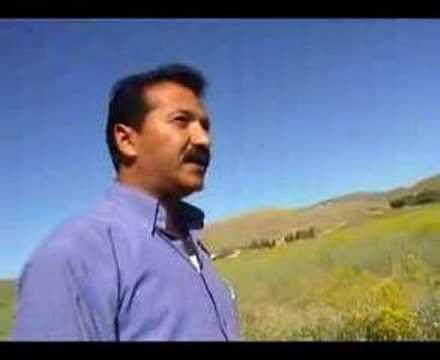 Sadiq Ronahî