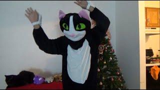 Previas a La navidad El Gato de los  Niños