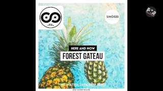 Forest Gateau - Here And Now (Matto Remix)
