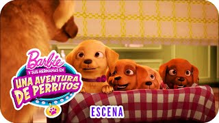 "Conoce a Honey, Rookie y DJ | Escena | Barbie™ y sus hermanas en ""Una aventura de perritos"""