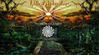 Hilight Tribe - Eagle Eye width=