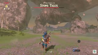 Breath Of The Wild | Mountain Sized Talus