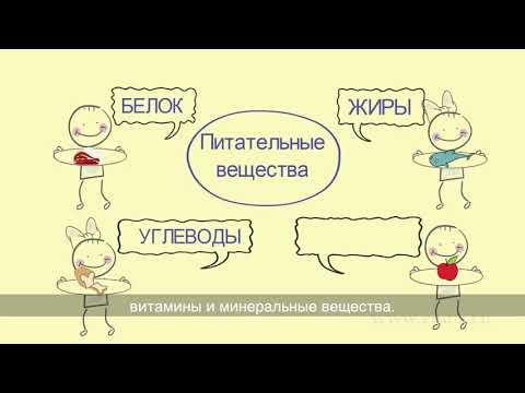 Урок здоровья