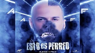 Alexis y Fido - Esto Es Perreo | Video Lyrics