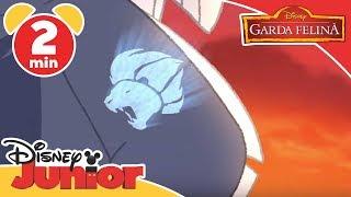 Garda Felină - În Safari cu Bunga. Doar la Disney Junior!