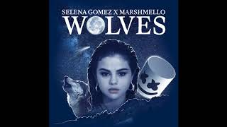 Selena Gomez, Marshmello - Wolves (Male Version)