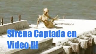Sirena Captada en Vídeo 2018 - Video Real ?