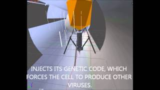 Biological Viruses Demo