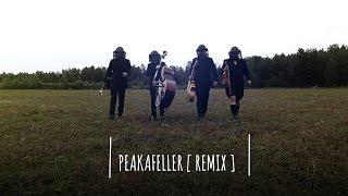 Flight of the Bumblebee - The Lost Fingers (Peakafeller Remix)