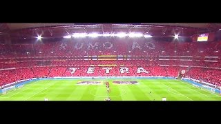 S.L. Benfica  -  Rumo ao Tetra 2016/2017 (Mário Wilson Speech)