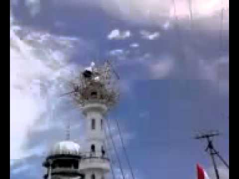 The miracle of nepal masjid .flv