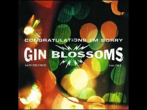 My Car de Gin Blossoms Letra y Video