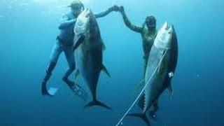 Blue water hunting HD Big Tuna hunter