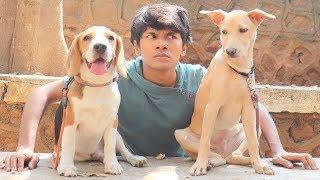 DOG SHORT FILM | OREO MET POCKET || MOHAK MEET || SEEMA