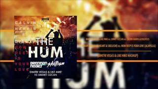 The Hum vs How Deep Is Your Love - DV&LM vs Ummet Ozcan vs Calvin Harris & Disciples (DV&LM MASHUP)
