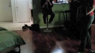 Lou Reed - Perfect Day - Accordion and Clarinet Cover