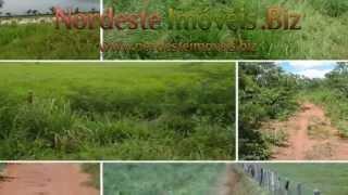Fazendas a venda no Piaui, Brasil,Fazendas a venda no MaPiToBa
