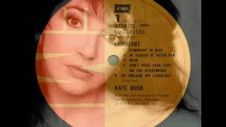 KATE BUSH -- #4 -- Don't Push Your Foot on the Heartbrake