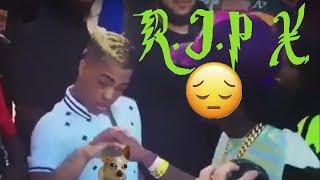 The LAST TIME XxxTentacion Gave Da Rat A ShoutOut  | RIP x Gunned Down
