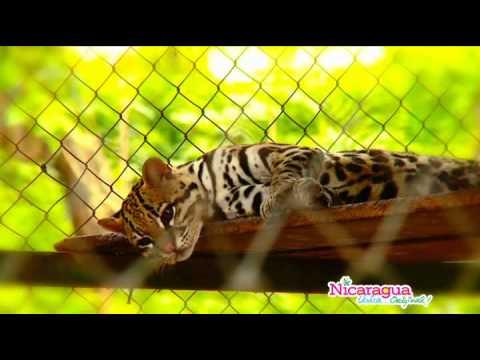 Chontales es Nicaragua 3