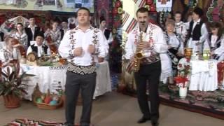 Ionut Hamza - Cinereta mi sa gata