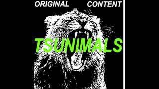 Martin Garrix ft DVBBS & Borgeous - Tsunimammols