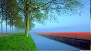 滾石眾星 - 快樂天堂 (鋼琴獨奏)