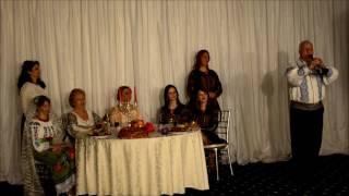 MOISE NEHOIANU- GEAMBARA-