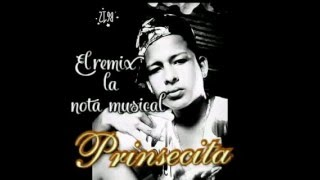 prinsesa     ( The remix La nota musical )