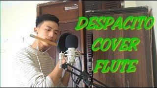 Despacito | Flute Cover | luis fonsi