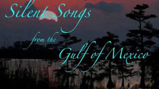 Silent Songs from the Gulf of Mexico music video.wmv