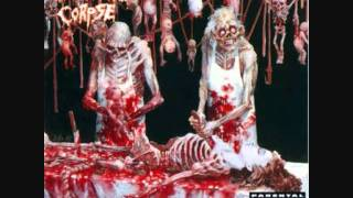 Cannibal Corpse - Butchered At Birth (8 bit).wmv