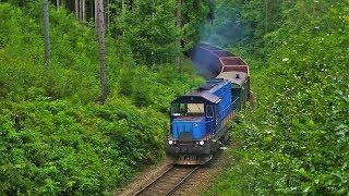 Vlaky:742 146 na manipulačním vlaku,13.8.2014