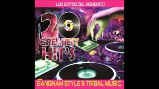 20 GREATESTS HITS  - EL BAILE DEL CABALLO LOCO - DJ EL FANTASMA