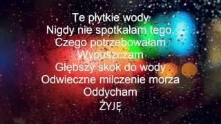 Alan Walker - Faded ( Polskie tłumaczenie-napisy )