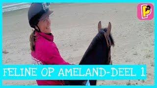 Feline met Penny op Ameland - vlog 1 || Penny TV